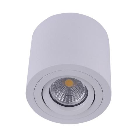 Emithor 48606 - Stropní bodové svítidlo SURFACE 1xGU10/50W/230V