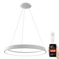 Immax NEO 07079L - LED Stmívatelný lustr na lanku LIMITADO LED/39W/230V 60 cm+DO Tuya