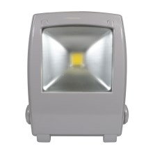 LED Reflektor FLOOD FE-N LED/30W/230V IP65