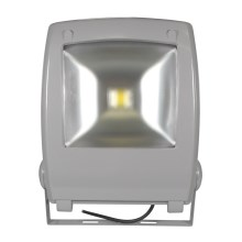 LED Reflektor FLOOD FE-N LED/50W/230V IP65
