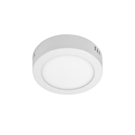 LED Stropní svítidlo ORTO NT 1xLED/6W/230V 3000K 12 cm