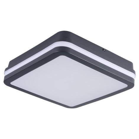 LED Venkovní stropní svítidlo se senzorem BENO LED/24W/230V 4000K antracit IP54