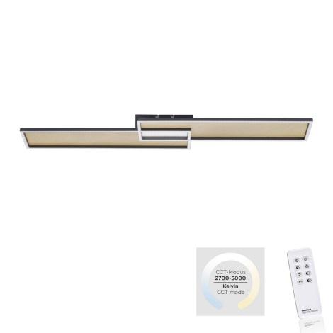 Paul Neuhaus 8371-18 - LED Stmívatelné stropní svítidlo AMARA LED/40W/230V + dálkové ovládání