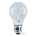 Průmyslová žárovka E27/60W/230V