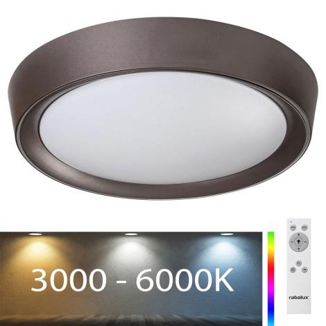 Rabalux 2987 - LED RGB Stmívatelné stropní svítidlo MOKKA LED/24W/230V + DO 3000-6000K